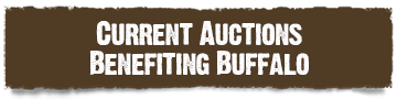 Current auctions benefiting buffalo