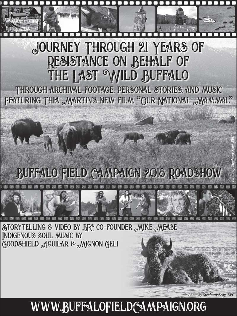 buffalo field campaign road show 2018 black and white poster