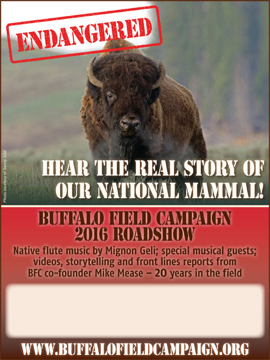 news 2016 08 25 001 buffalo field campaign road show 2016 poster color h700
