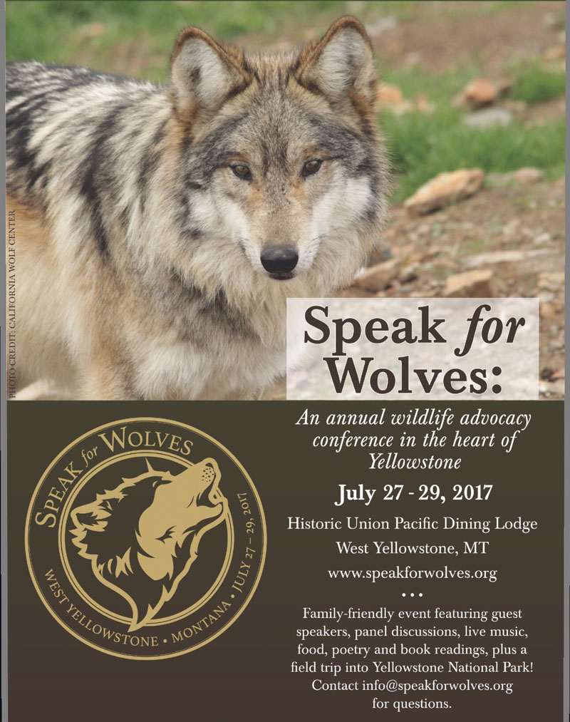 2017 07 13 02 001 SpeakforWolves 800