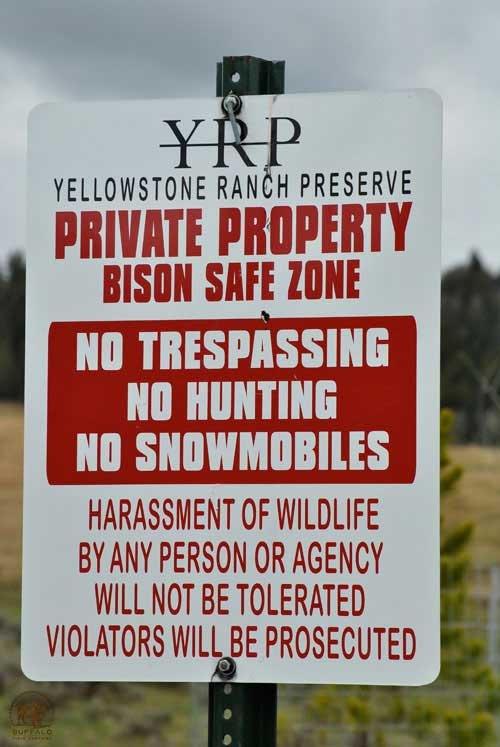 yellowstone ranch preserve private property bison safe zone