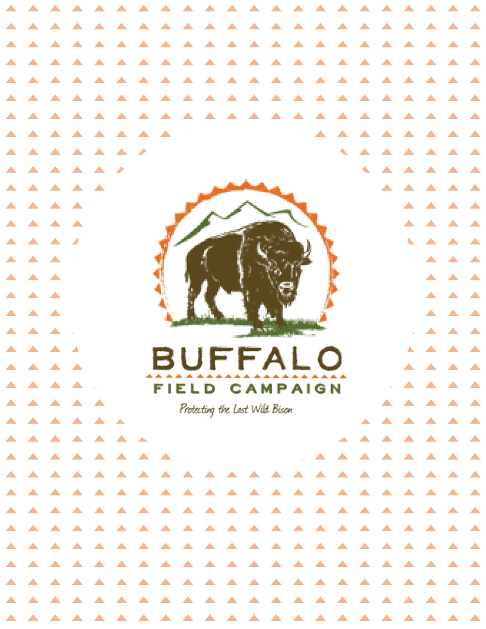 Buffalo Field Campaign Activity Book 02