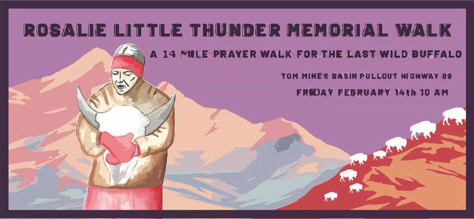 banner rosalie little thunder memorial walk 2020