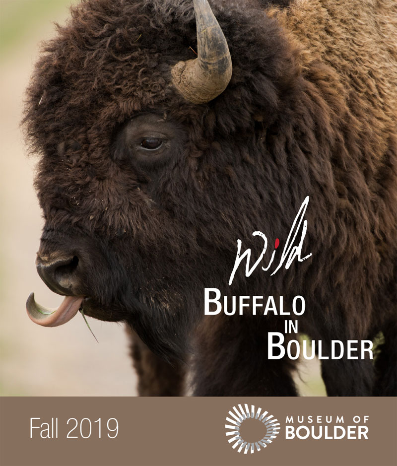 bfc wild buffalo in boulder september 2019 1