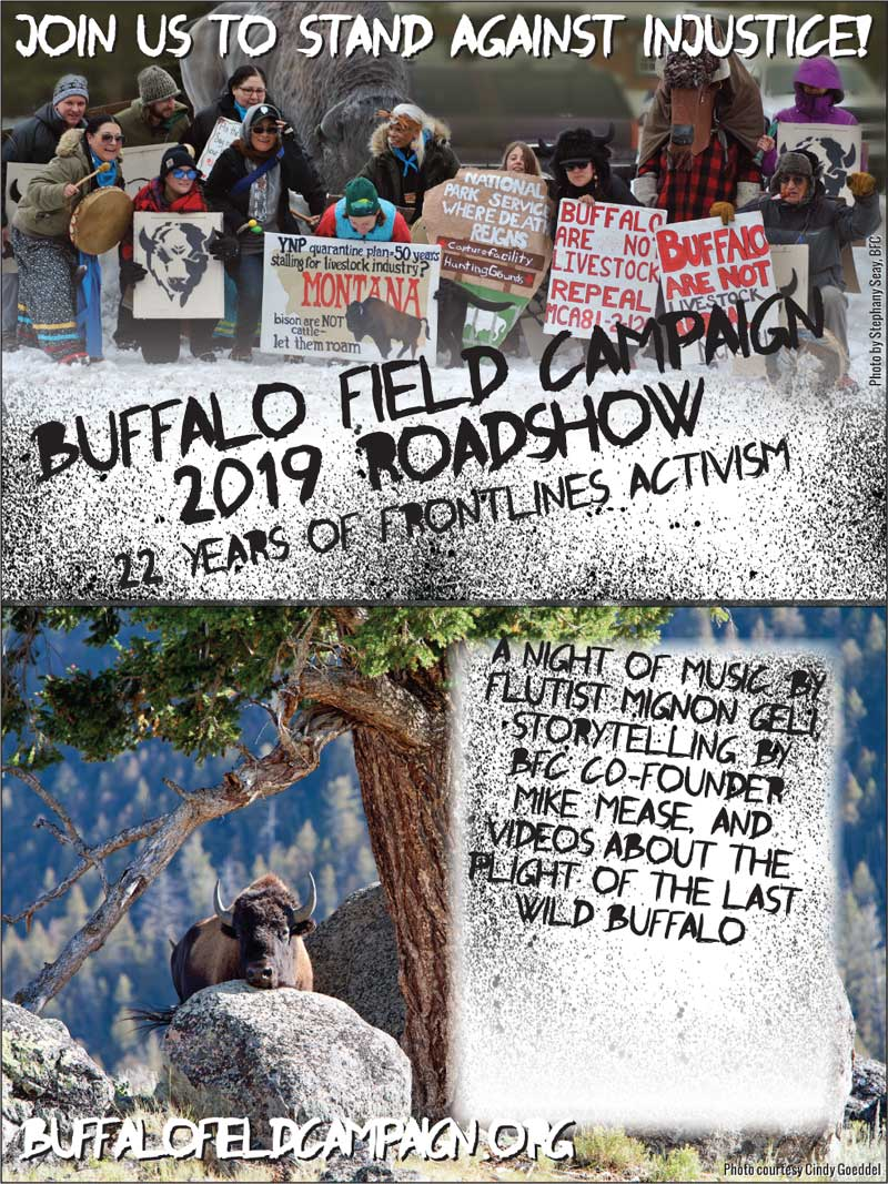 buffalo field campaign road show poster 2019 with the unexpected brass band color