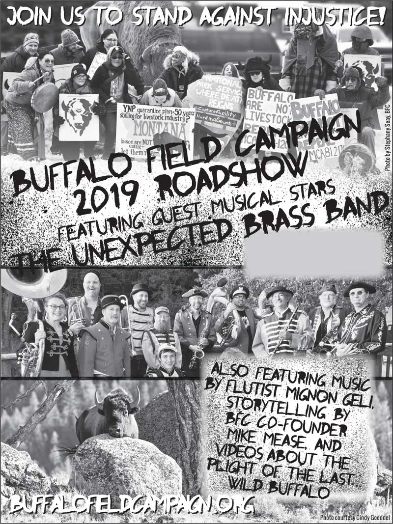 buffalo field campaign road show poster 2019 with the unexpected brass band black and white