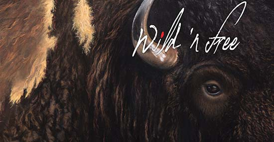 Wild n Free Gala and Art Auction