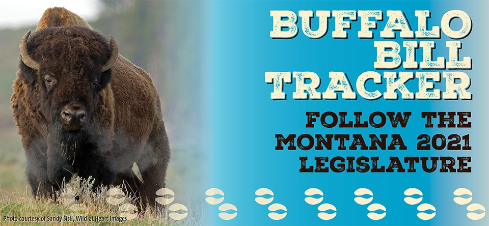 bfc buffalo bill tracker banner